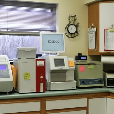 Counter top of back vets office. Counter top is covered with various medical devices such as centrifuge.